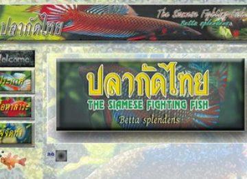 e-media ปลากัดไทย