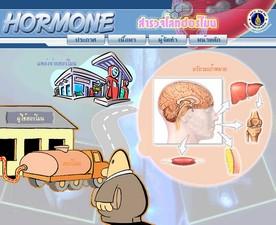 ระบบฮอร์โมน